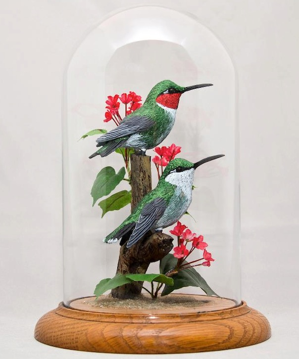 WBDeSelms_Hummingbirds